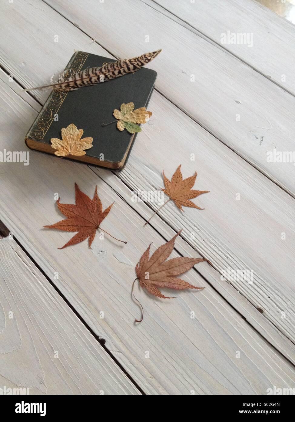 Herbst-vignette Stockbild