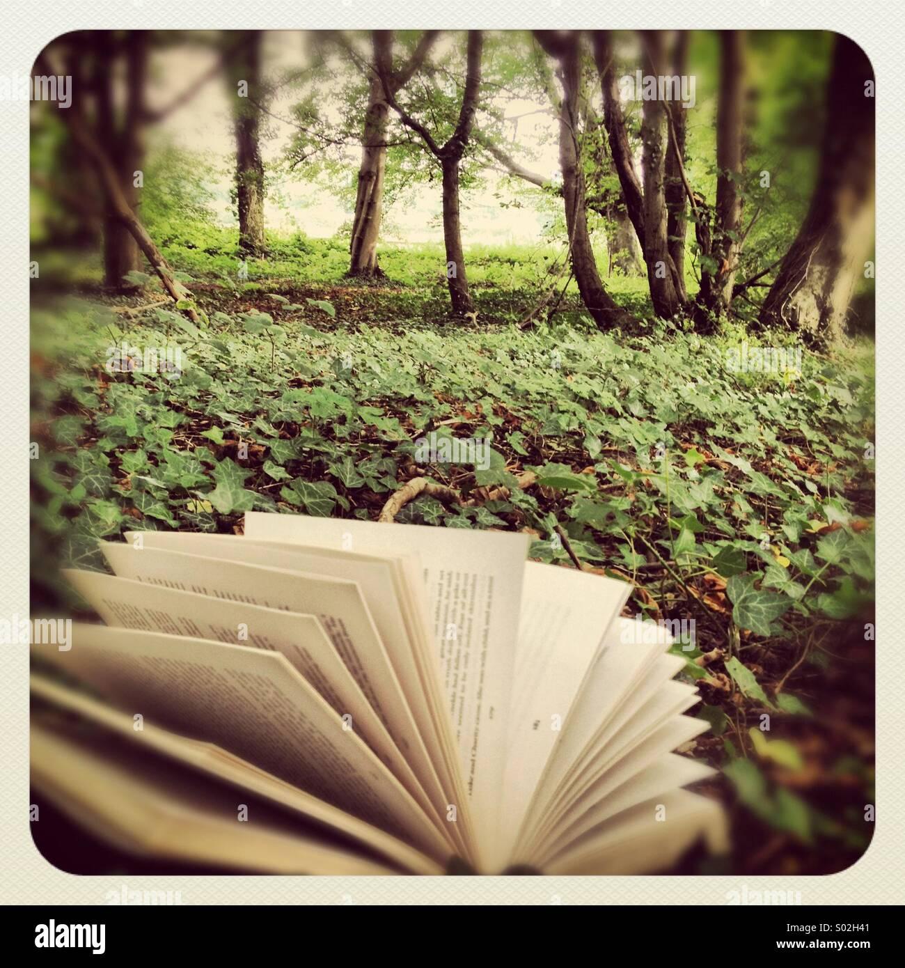 Lesen Sie ein Buch draußen unter den Bäumen. Ein Moment der Entspannung, Vergnügen für Ihren Stockbild
