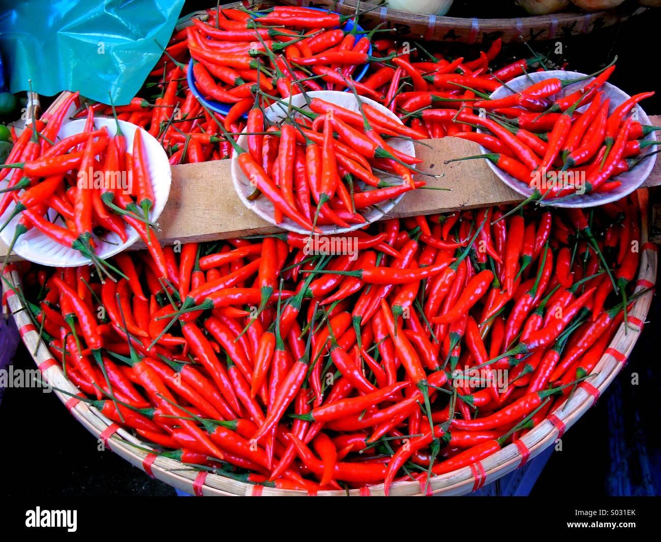 Rote Chilischote Stockfoto