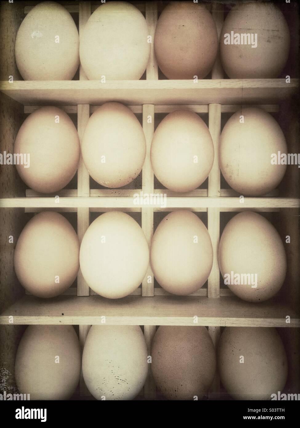 Reihen von frischen Hühnereier in einem hölzernen Kasten Stockbild