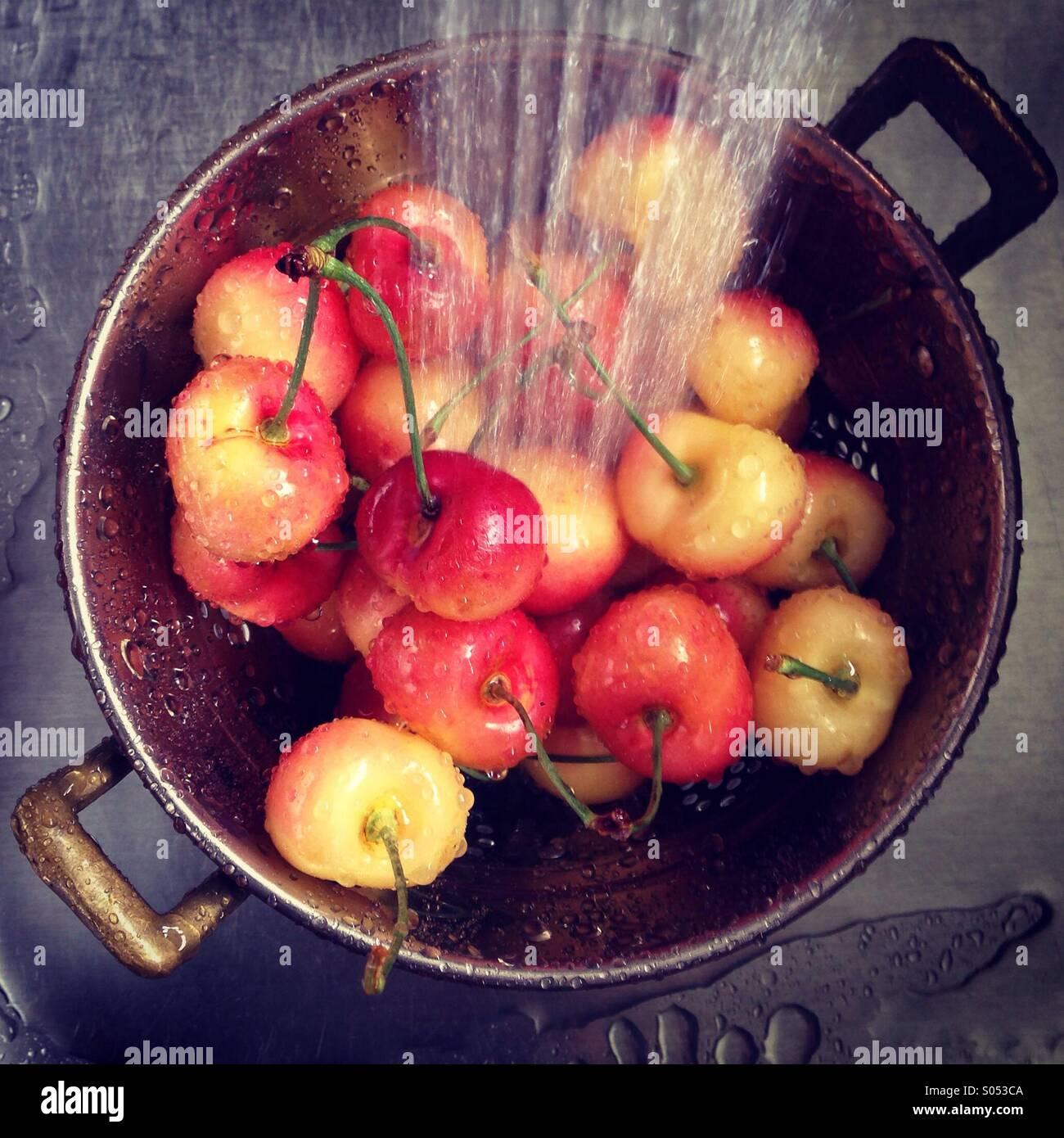 Rainier Kirschen im Spülbecken waschen. Stockfoto