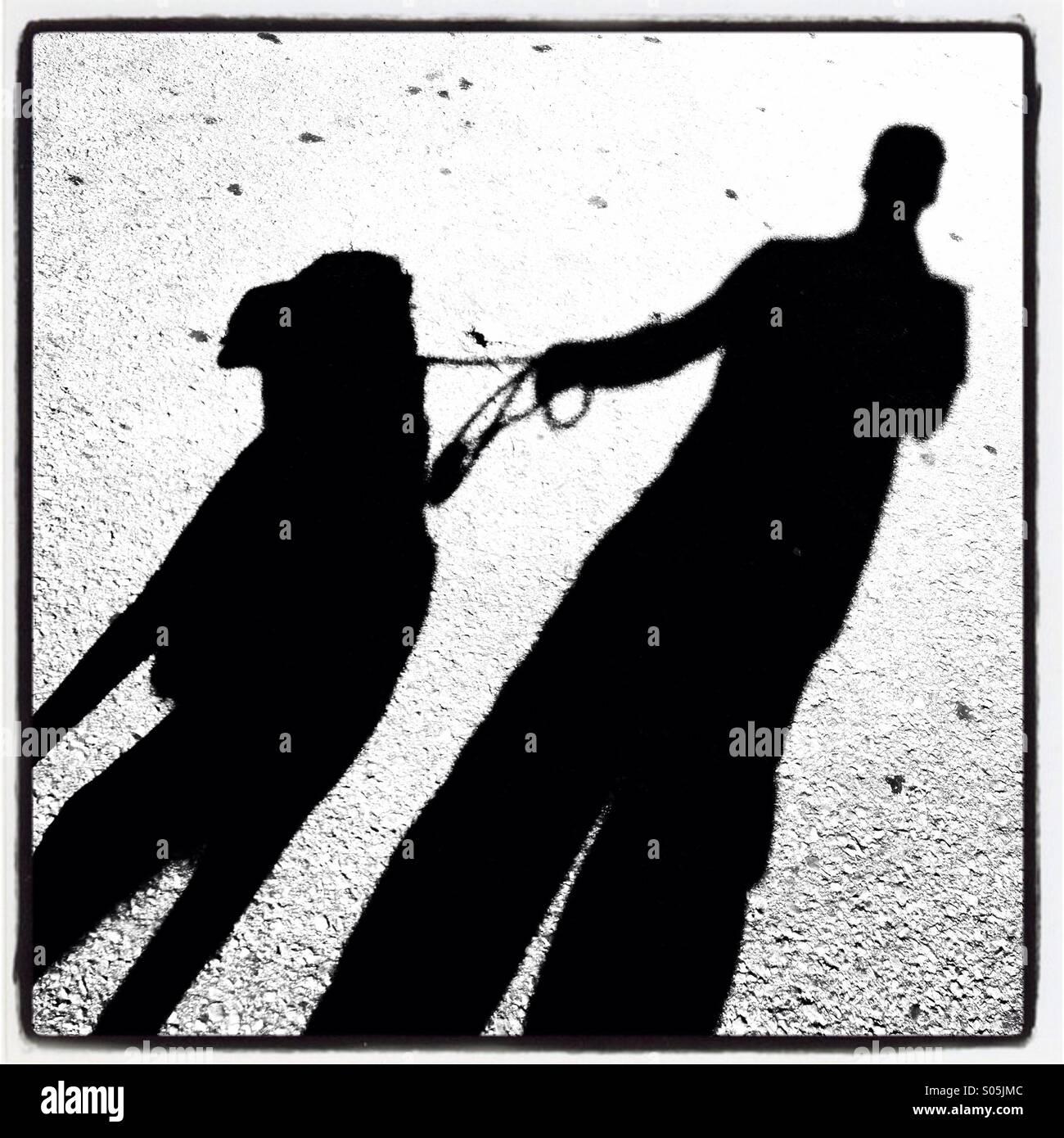 Schatten einer Person einen Hund spazieren gehen Stockbild