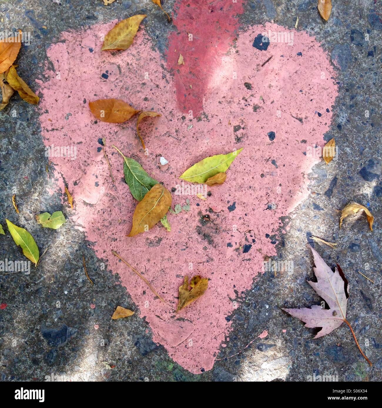 Herz Stockbild