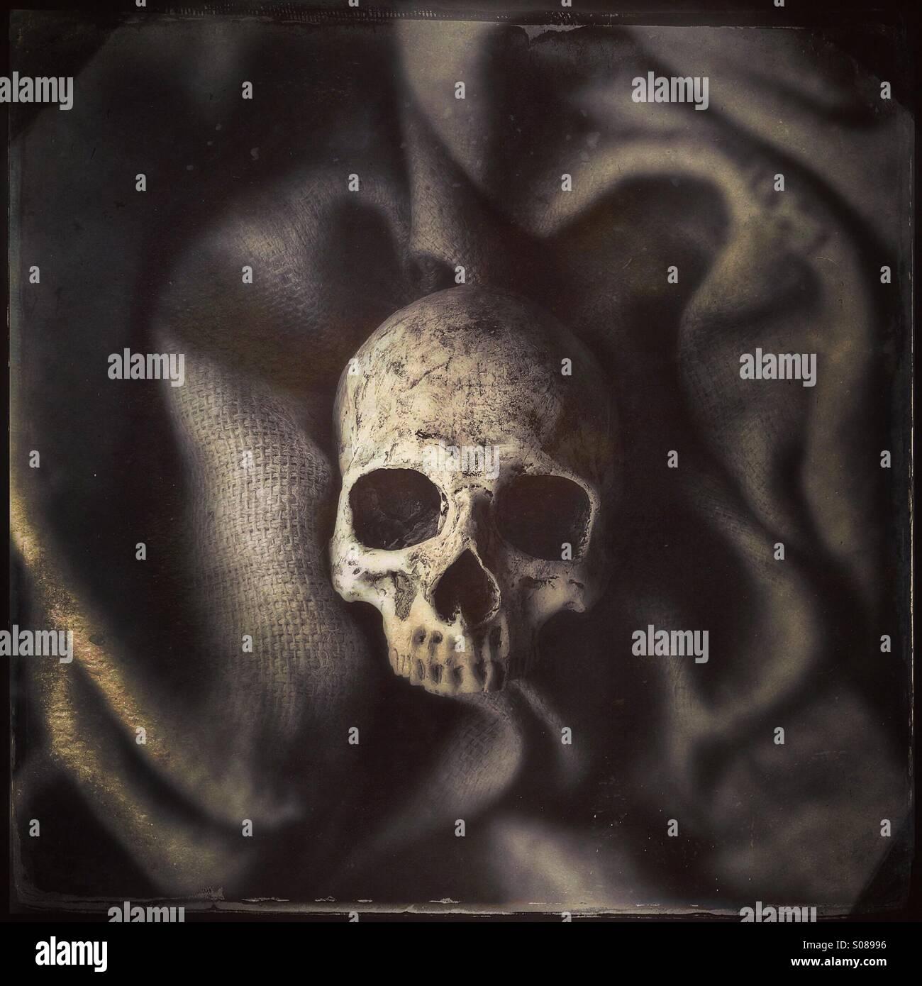 Menschlicher Schädel umgeben von Sackleinen Stockbild