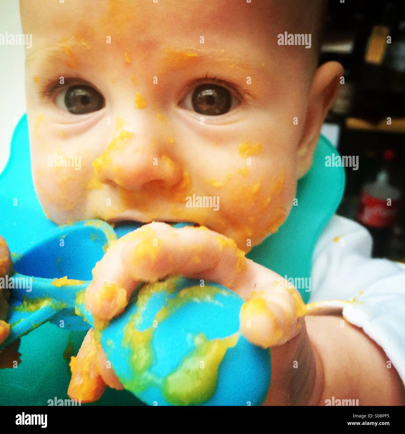 Baby Boy Kupplungen fast 6 Monate alt Entwöhnung Löffel als er versucht, pürierten Kürbis Essen Stockbild