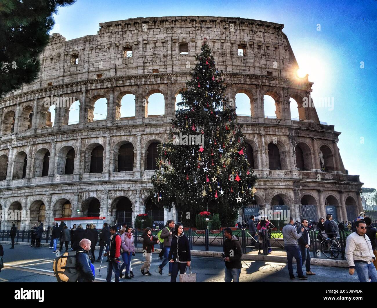 christmas tree rome colosseum stockfotos christmas tree. Black Bedroom Furniture Sets. Home Design Ideas