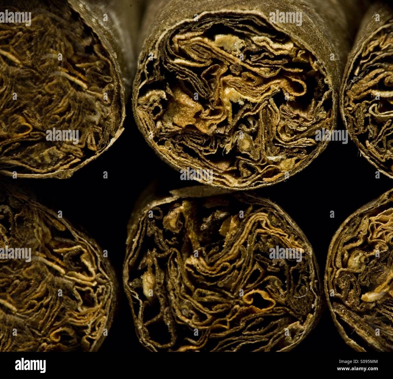 Braune trockene Zigarren Stockbild