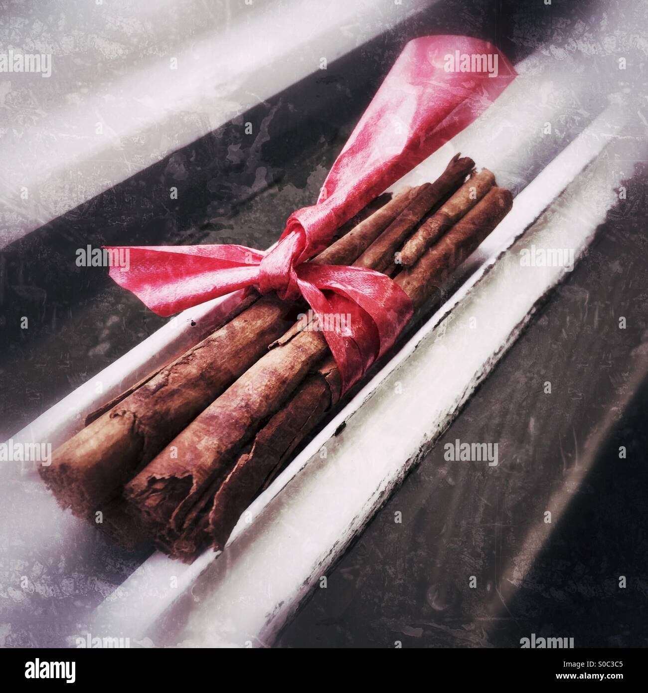 Heizkörper Zum Sitzen natürliche zimt verpackt in einer roten schleife sitzen auf einem