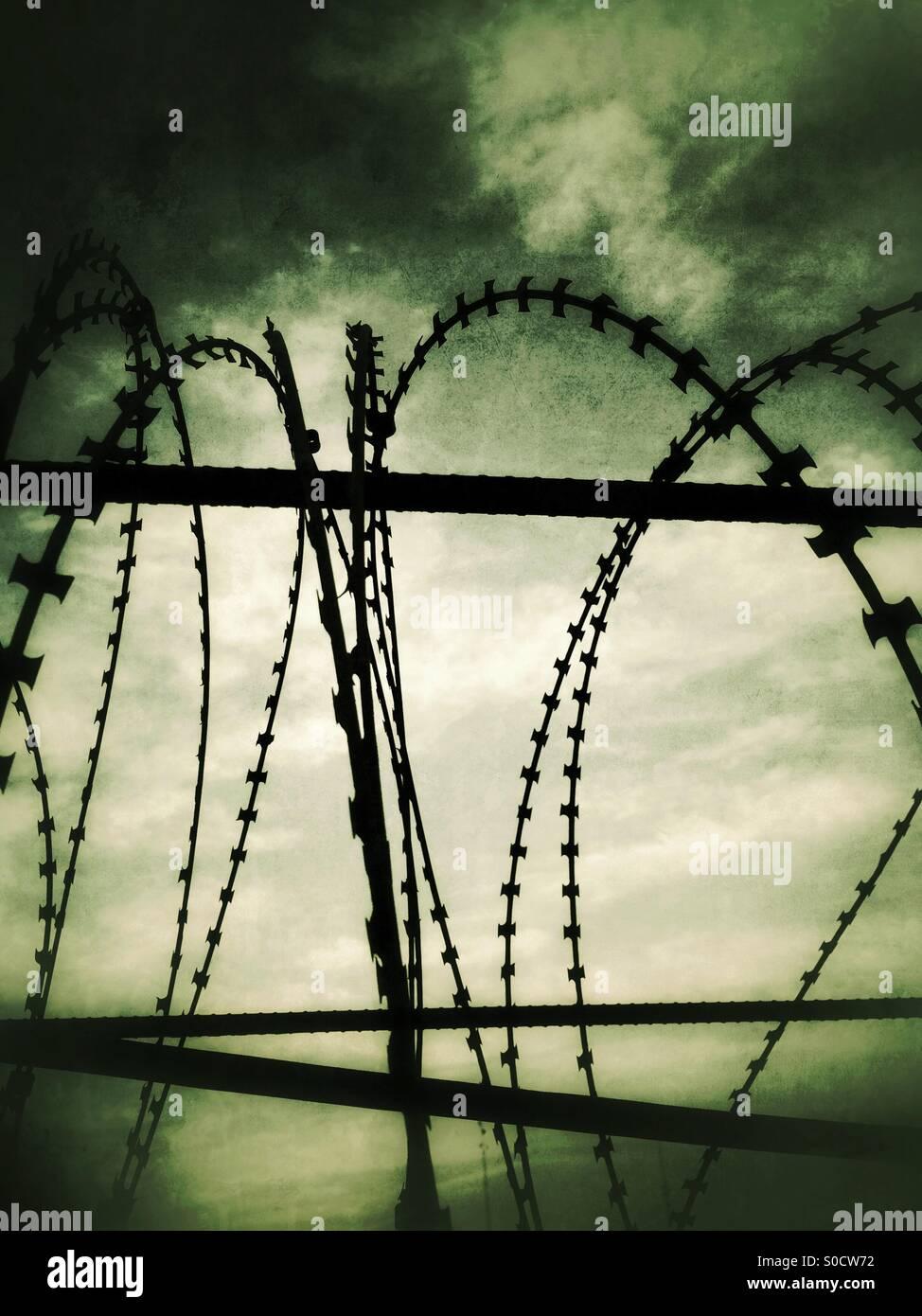 Barb wire Stockbild