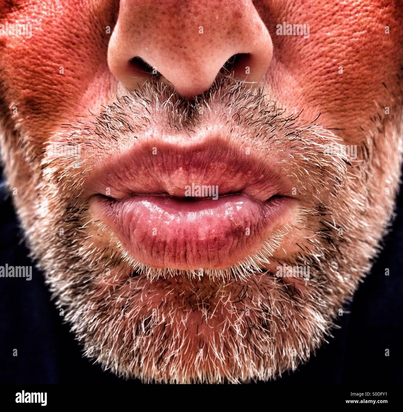Erwachsener Mann mit Bart weht Kuss Stockbild