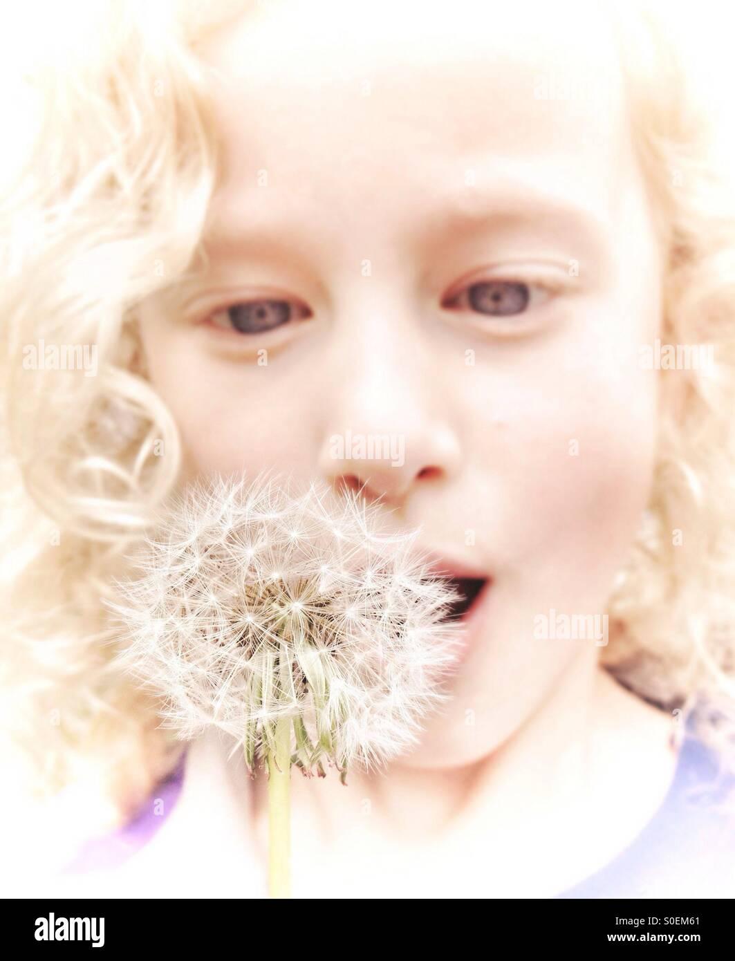 Junges Mädchen bläst auf Löwenzahn Samen Kopf Stockbild