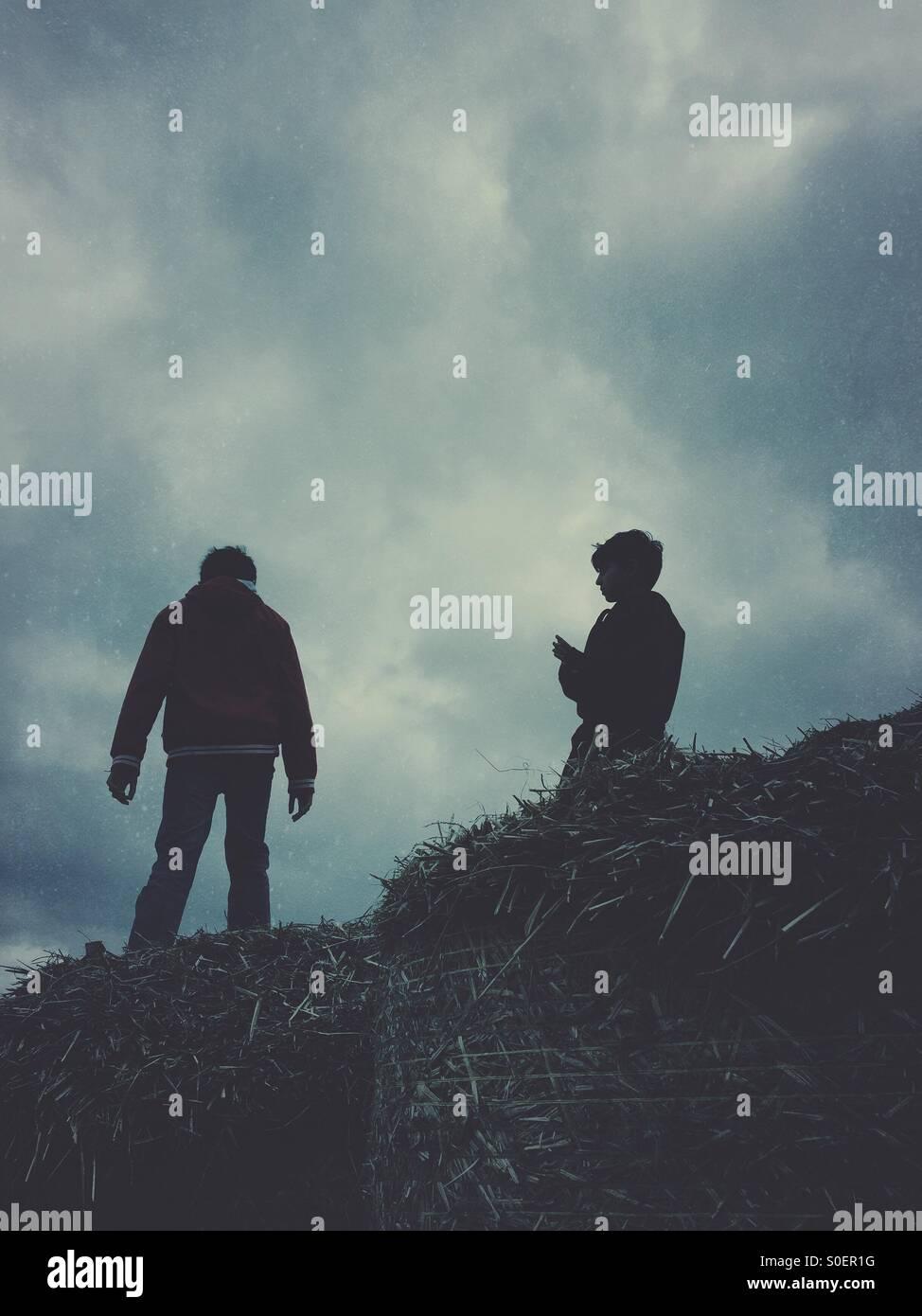 Zwei jungen stehen auf einem Heuhaufen Stockbild