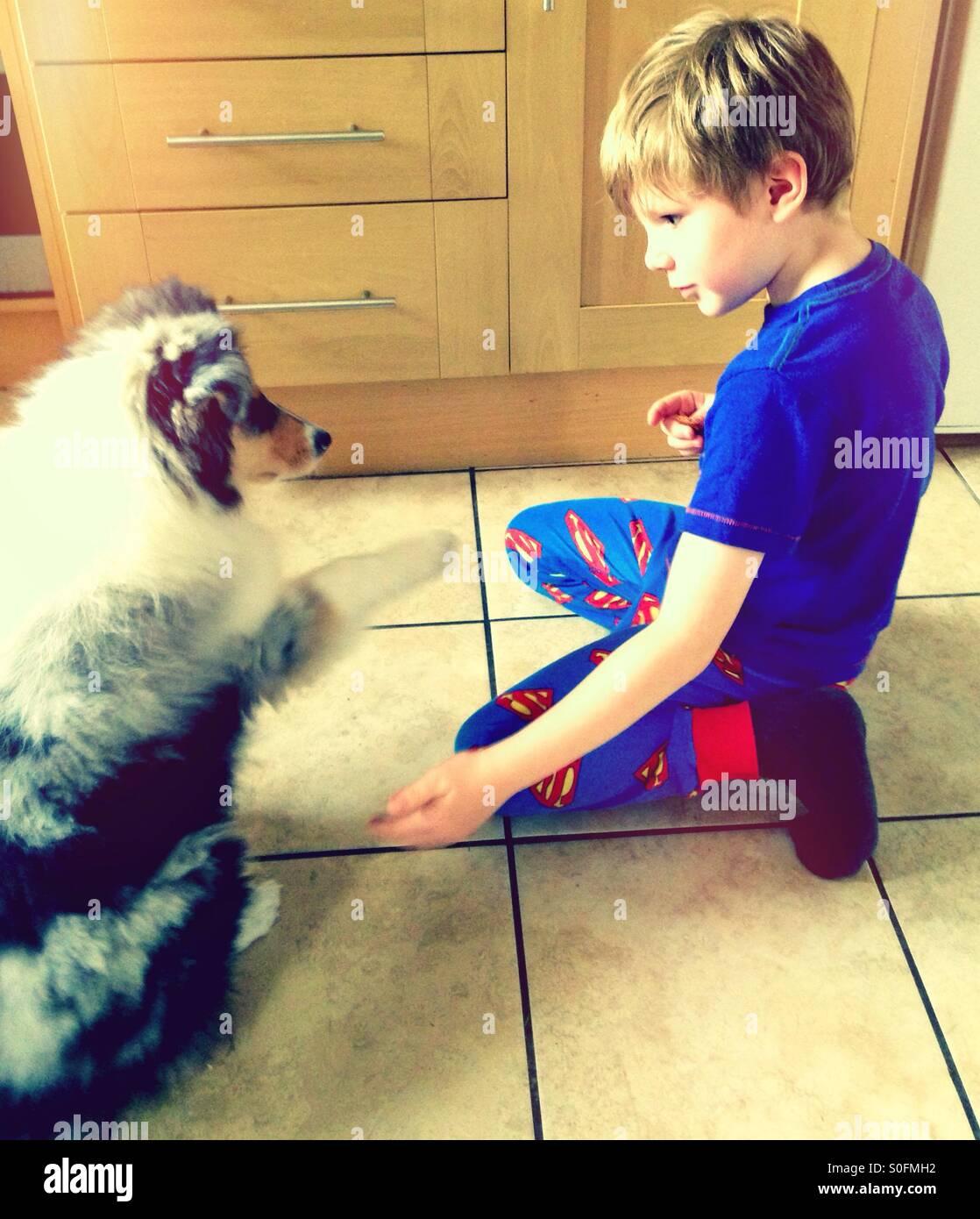 Geben Sie ein Junge eine Pfote. Welpe ein Junge ein Pfötchen geben. Stockbild