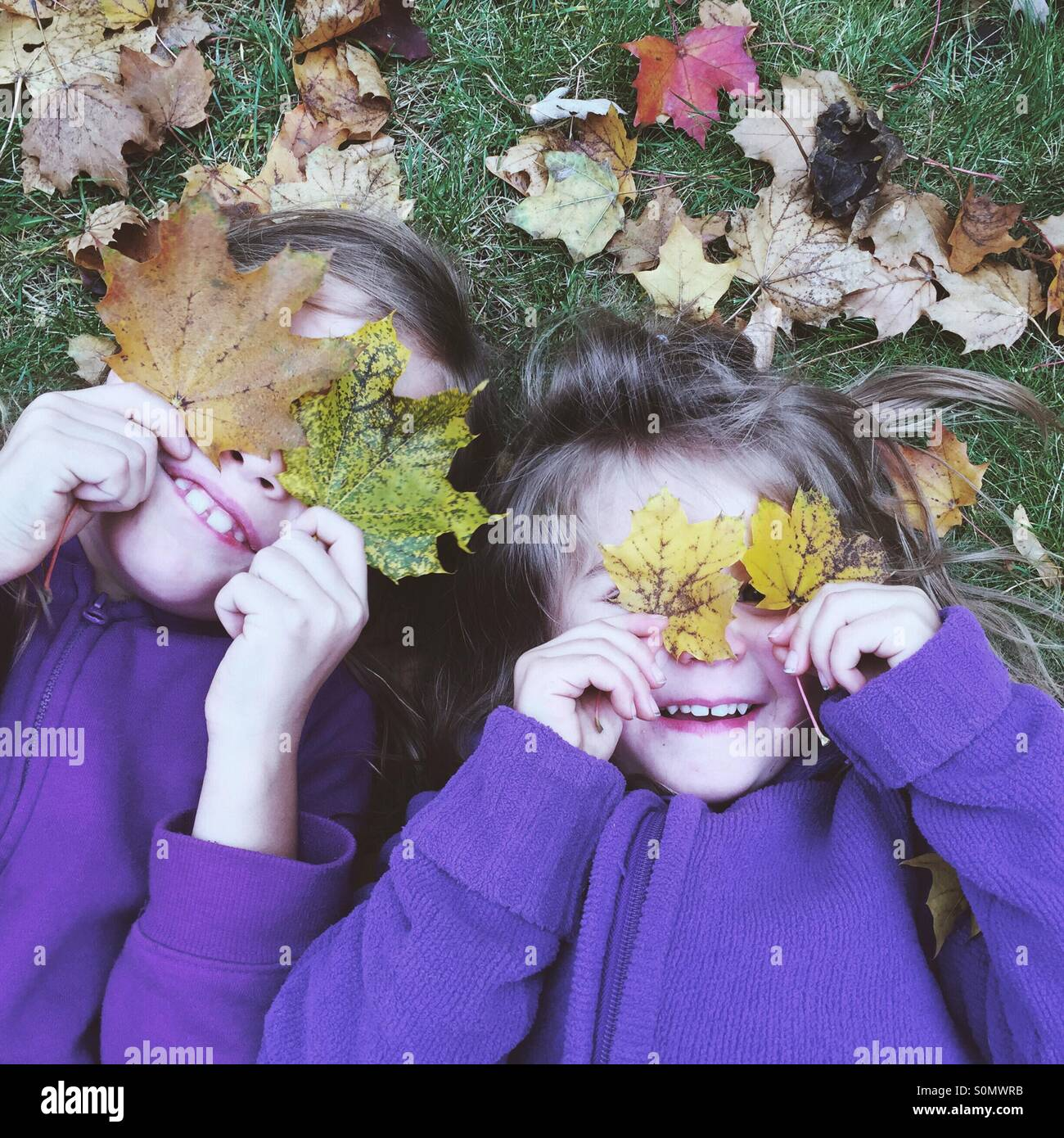 Schwestern, die das Spiel mit der Blätter im Herbst Stockbild