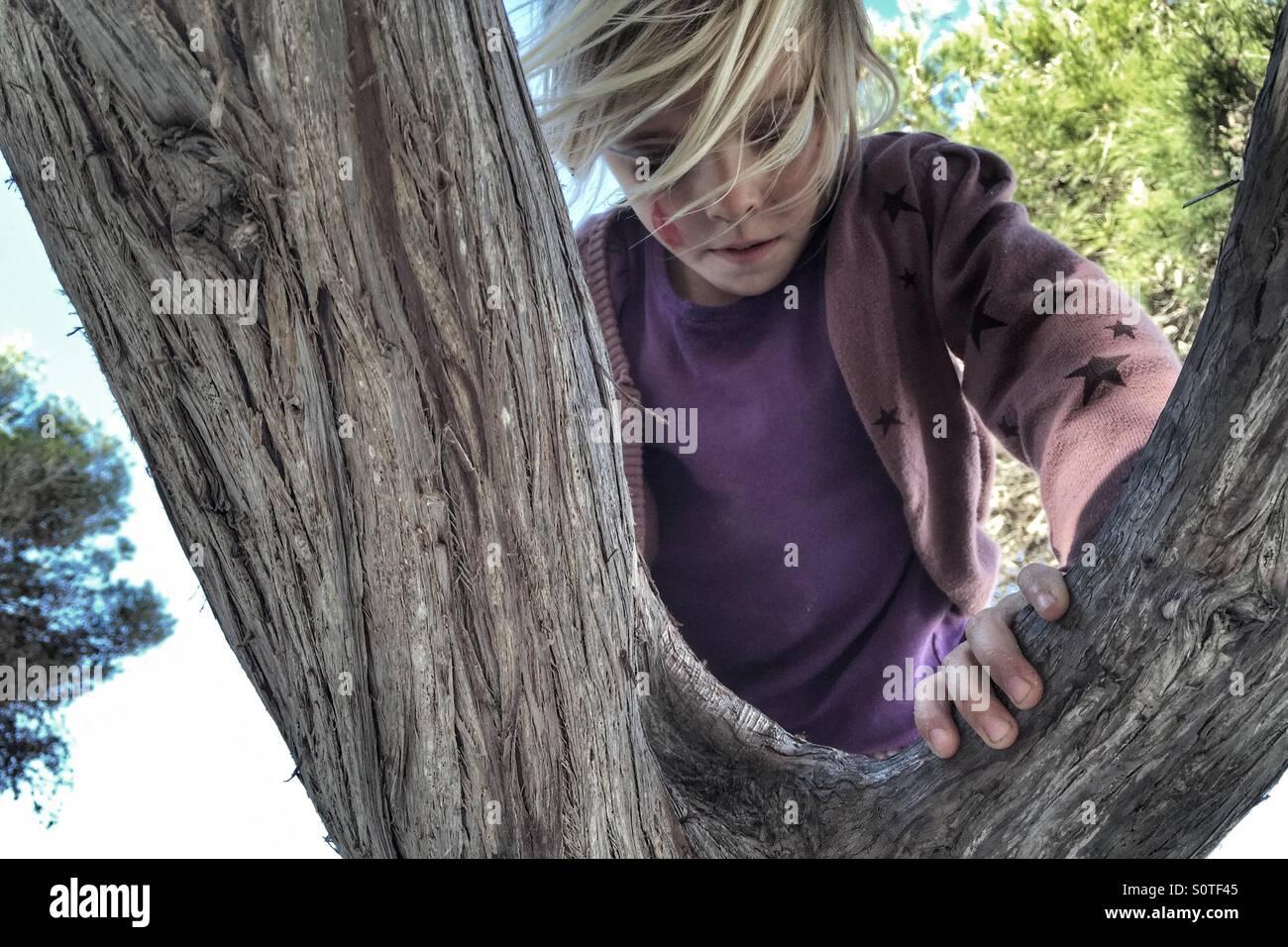 Mädchen, die einen Baum klettern Stockbild
