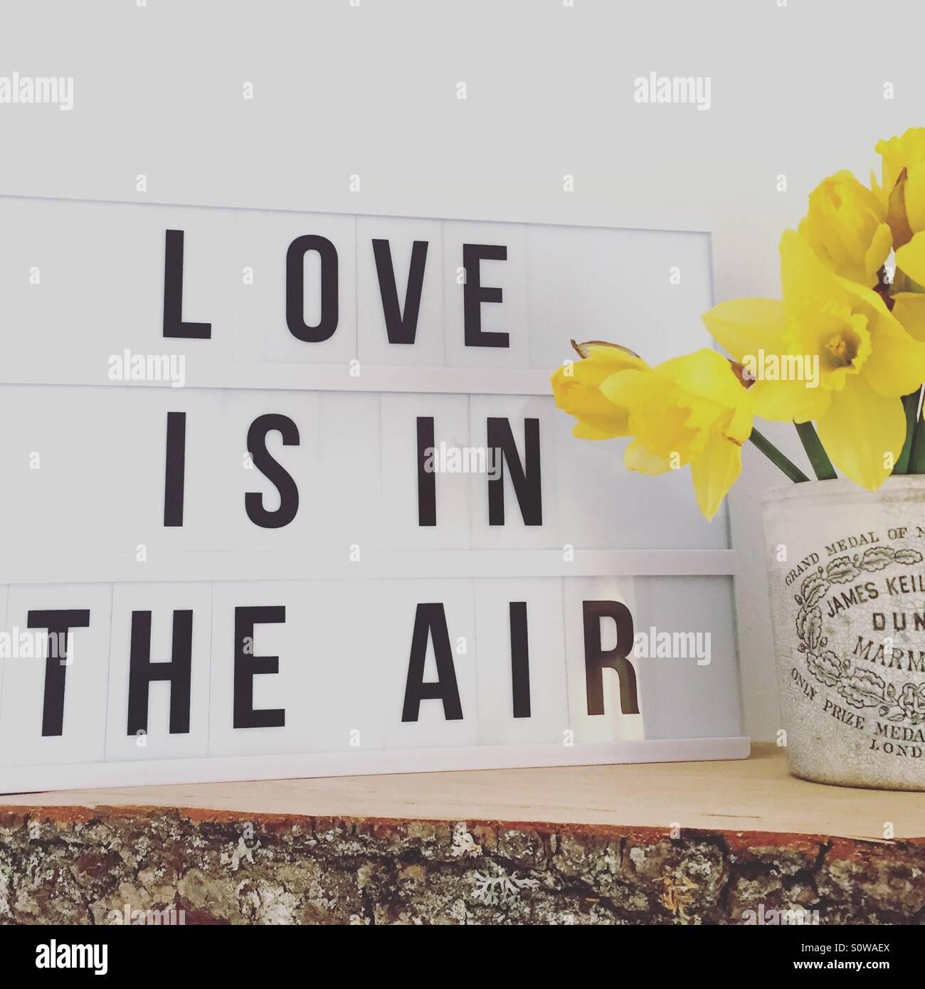 Liebe liegt in der Luft Stockbild