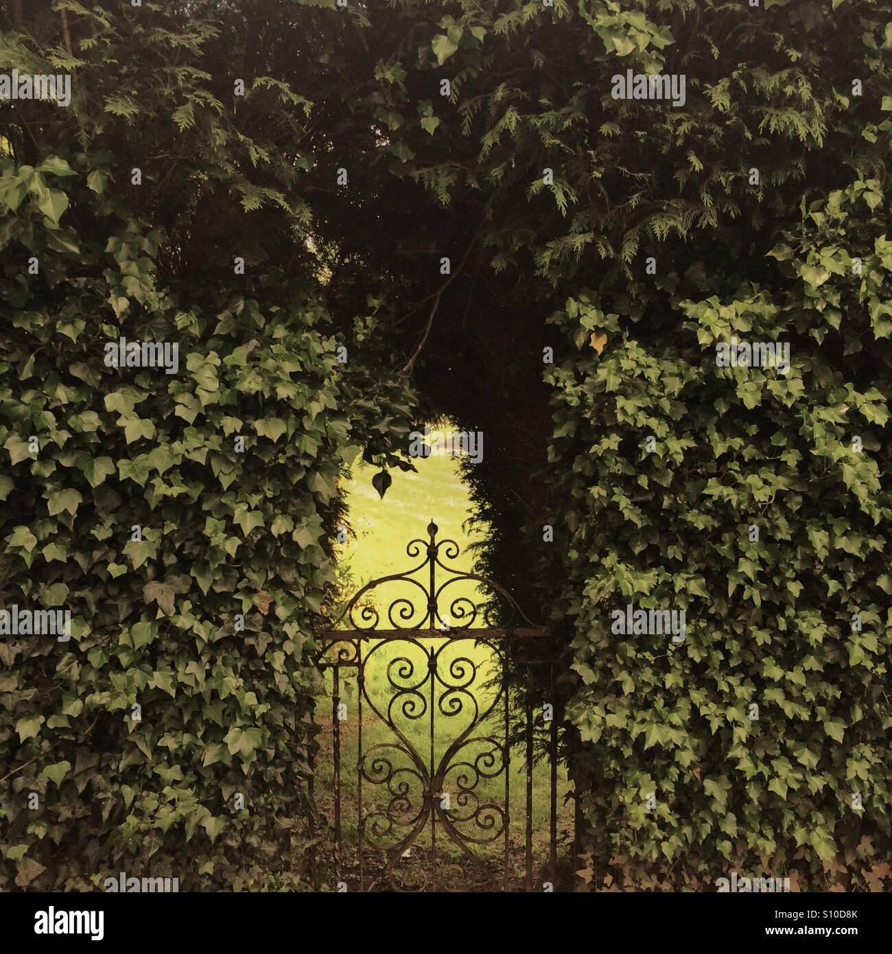 Geheimer Garten Stockbild
