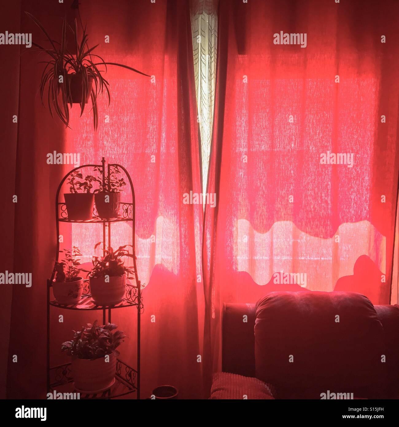rote vorh nge wohnzimmer stockfoto bild 310525589 alamy. Black Bedroom Furniture Sets. Home Design Ideas