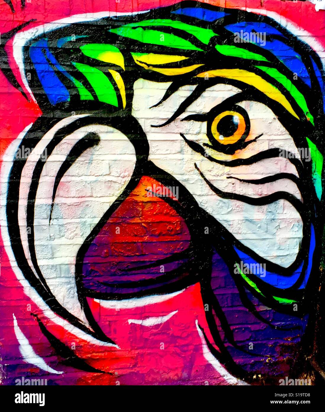 Papagei Street Art in Brick Lane, London Stockfoto
