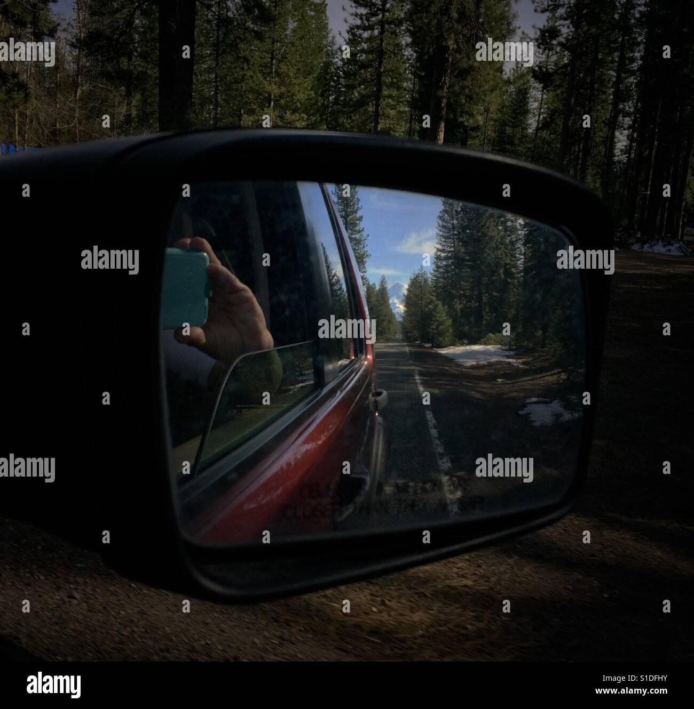 Der Redwood-Wald und einem Berggipfel erscheinen in einem Rückspiegel eines roten SUV. Eine Hand hält Stockbild