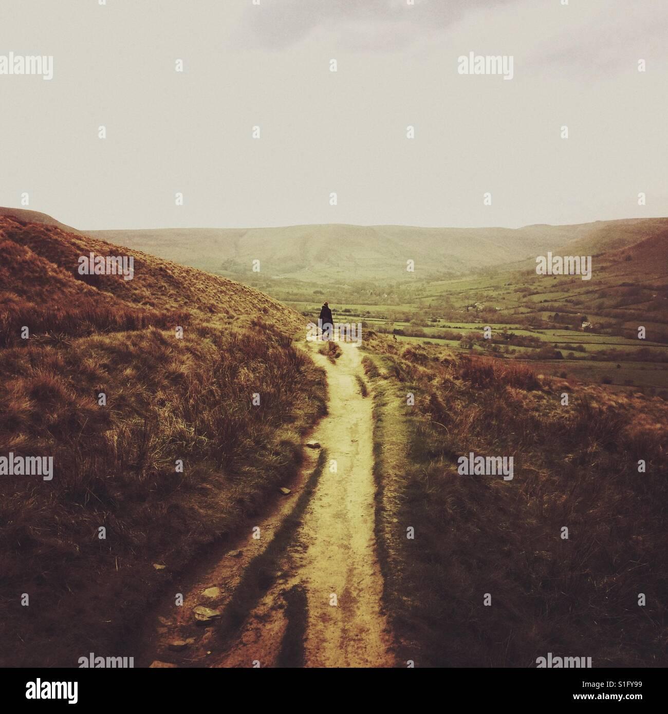Wandern im Moor Stockbild