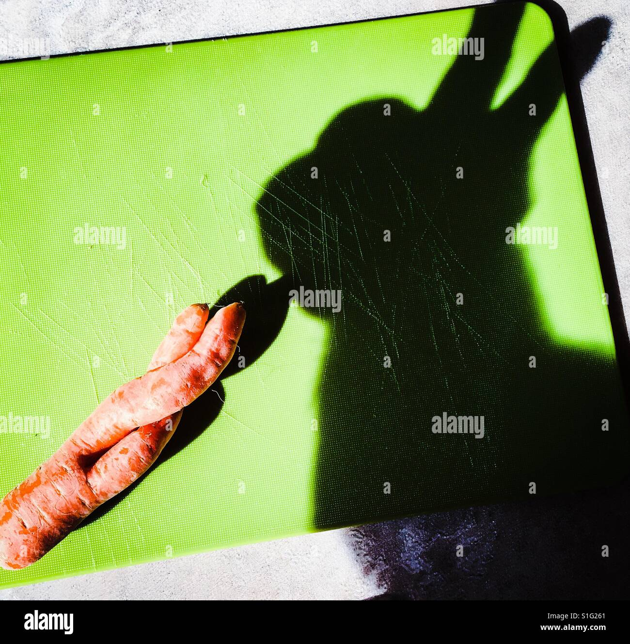 rabbit eating carrot stockfotos rabbit eating carrot bilder alamy. Black Bedroom Furniture Sets. Home Design Ideas