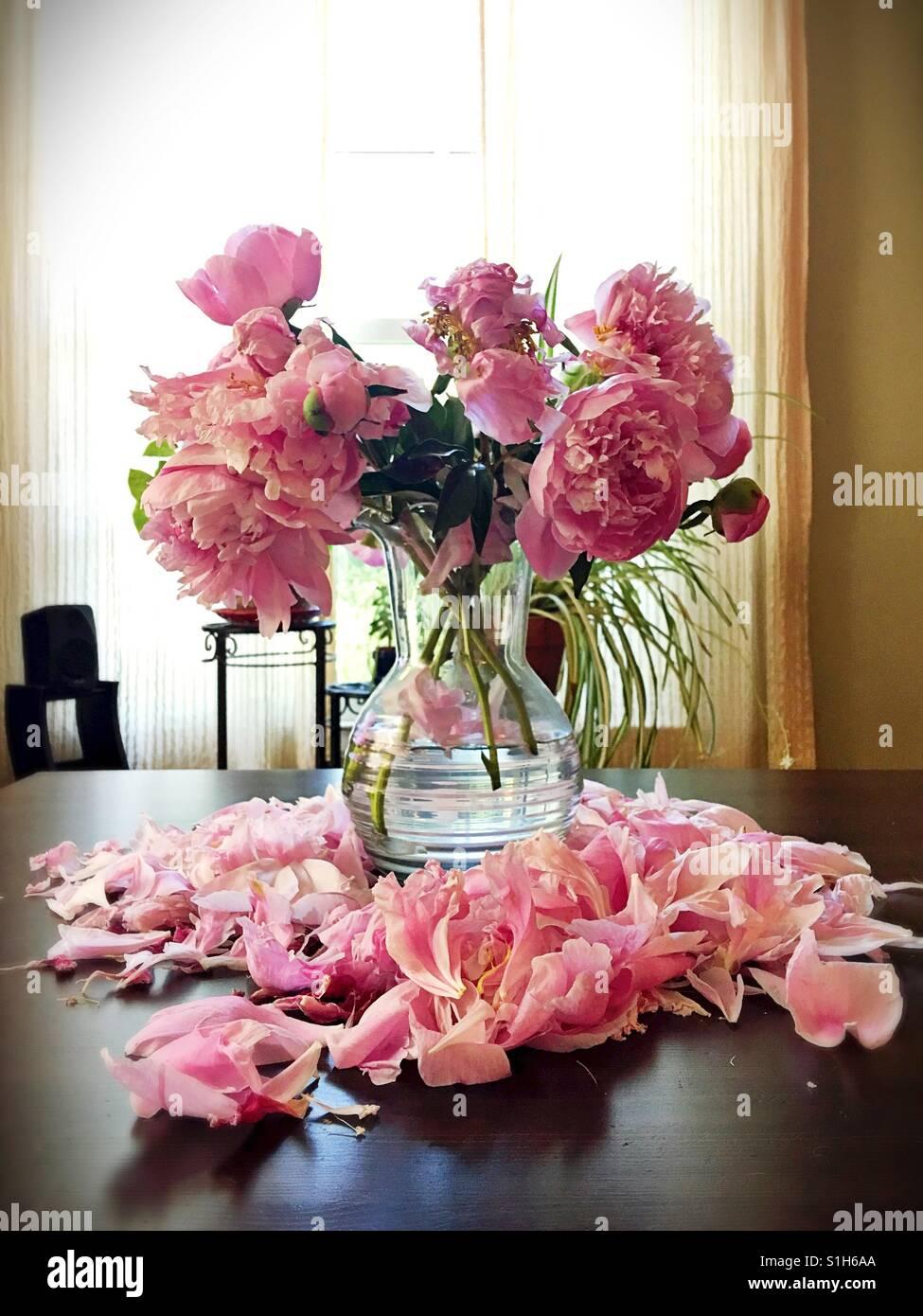 Flowers Dying Stockfotos & Flowers Dying Bilder - Alamy