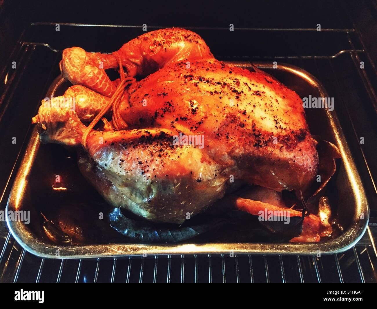 Freilandhaltung Hähnchen Braten Im Ofen Stockfoto Bild 310787303