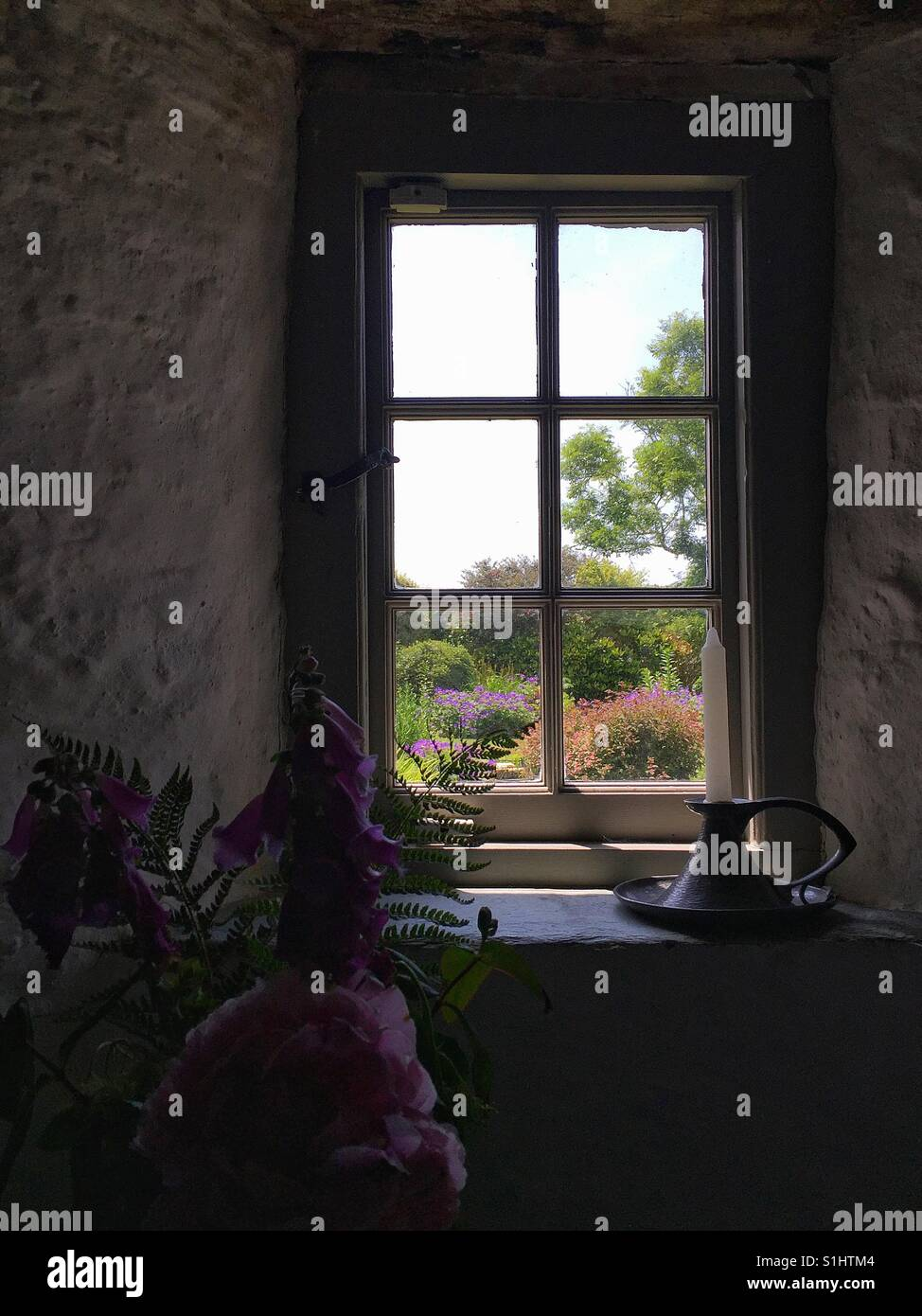 Flowers Through Window Stockfotos & Flowers Through Window Bilder ...