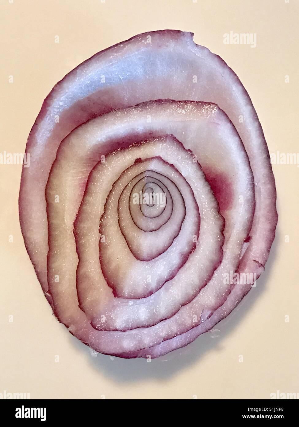 Rote Zwiebel, in Scheiben geschnitten im Querschnitt, Muster ...
