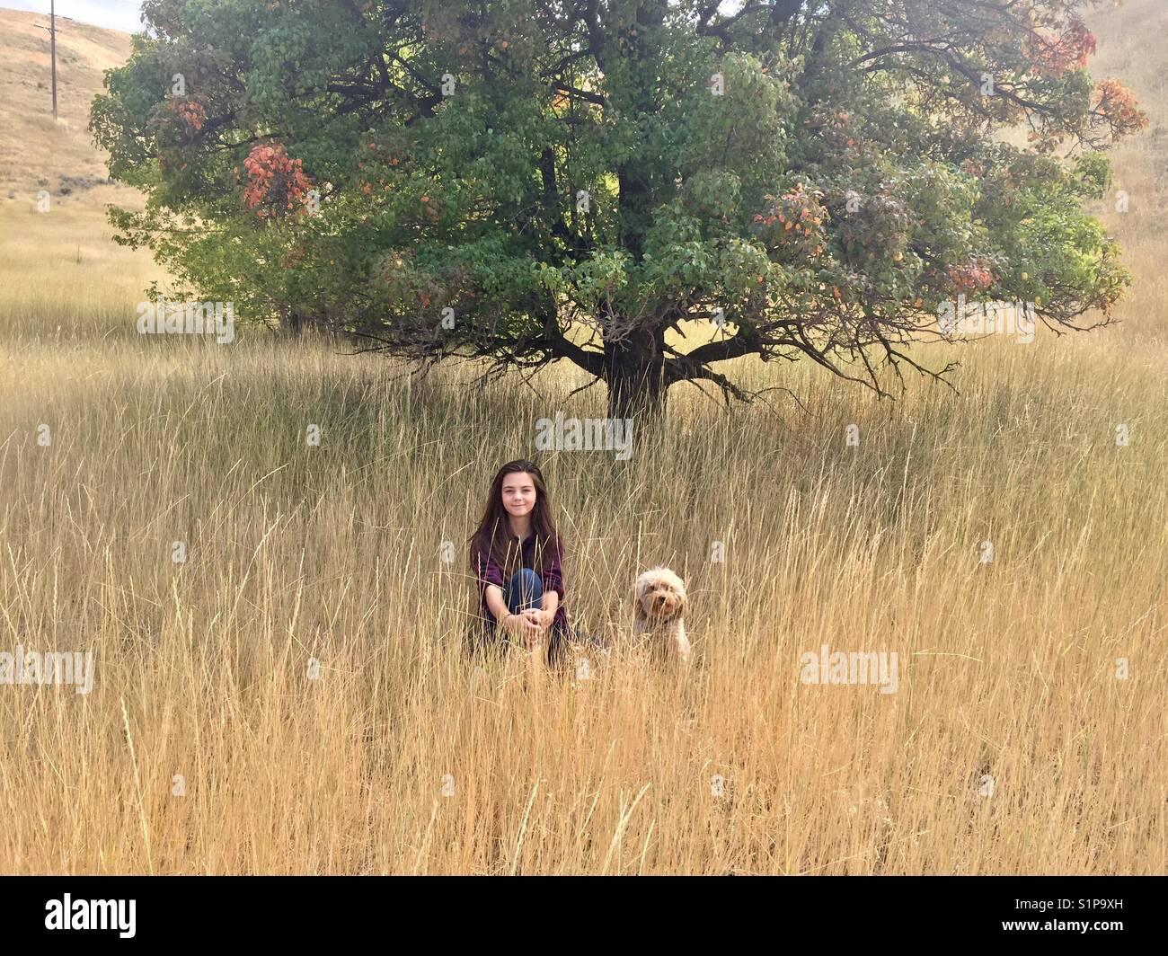 Ein Mädchen und ihre goldendoodle Welpen sitzen in einem Feld durch einen Baum mit bunten Blättern in Stockbild
