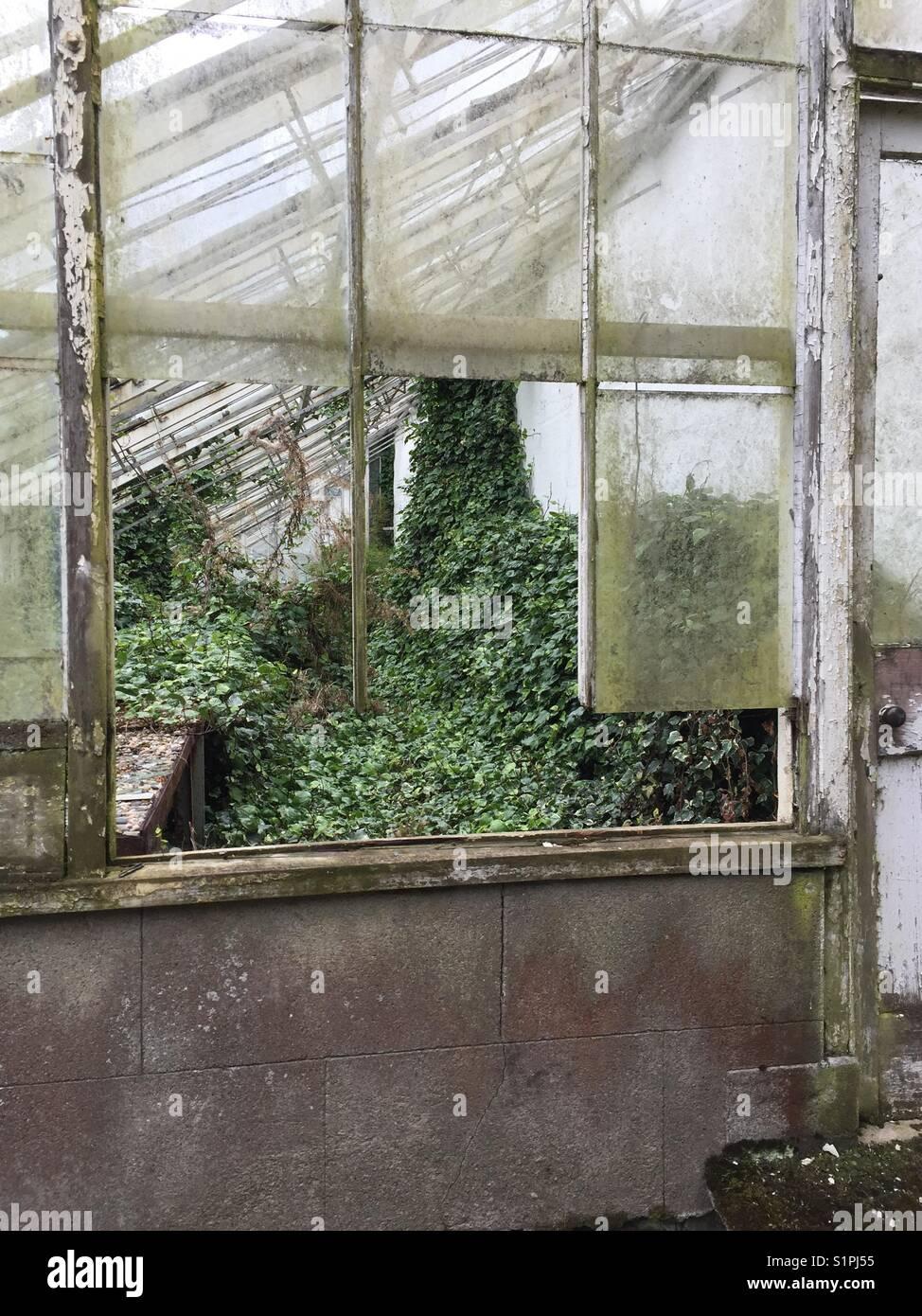 Garden Greenhouse Broken Glass Stockfotos & Garden Greenhouse Broken ...