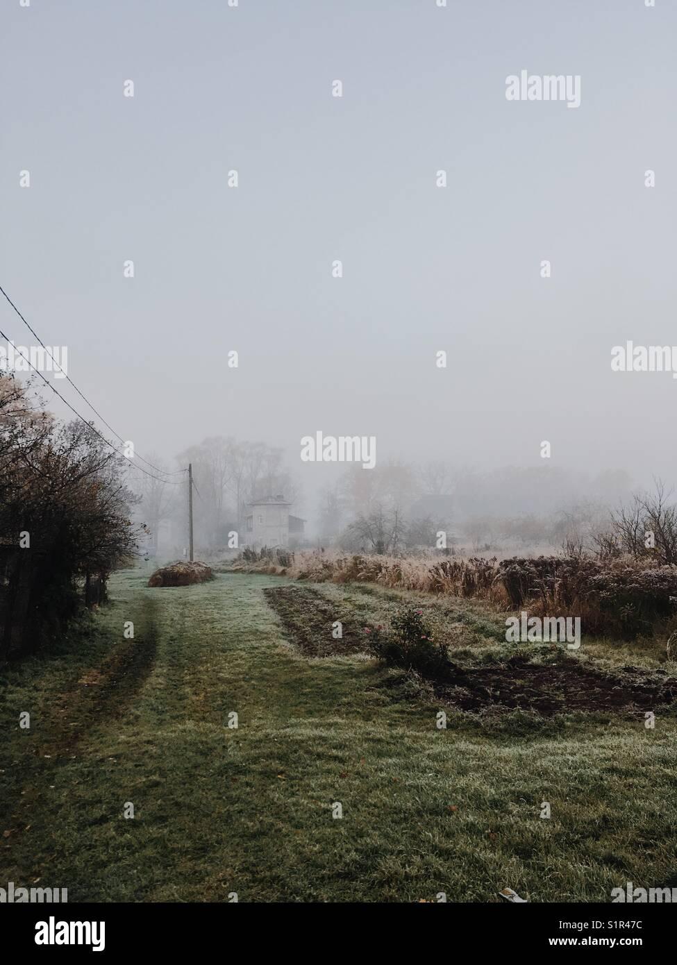 Herbste Szene. Weg in den Nebel. Stockbild