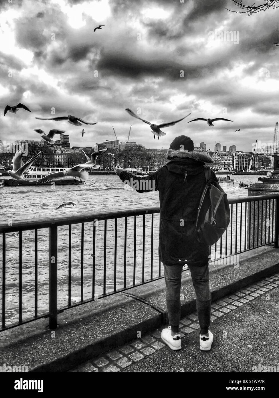 Ein Mann Fütterung seiner Hand holding Möwen zu füttern, da die Vögel fliegen um ihn herum. Stockbild