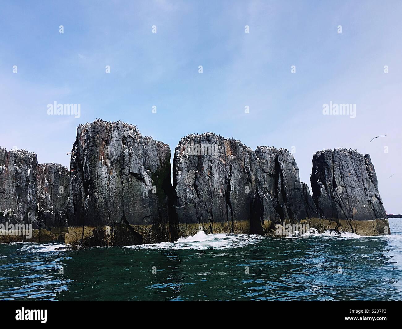 Meer und Klippen Stockbild