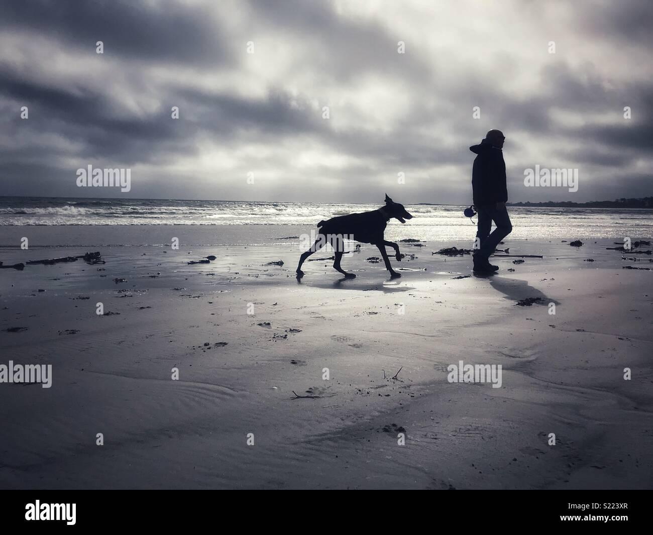 Spaziergang mit dem Hund am Strand entlang. Stockfoto