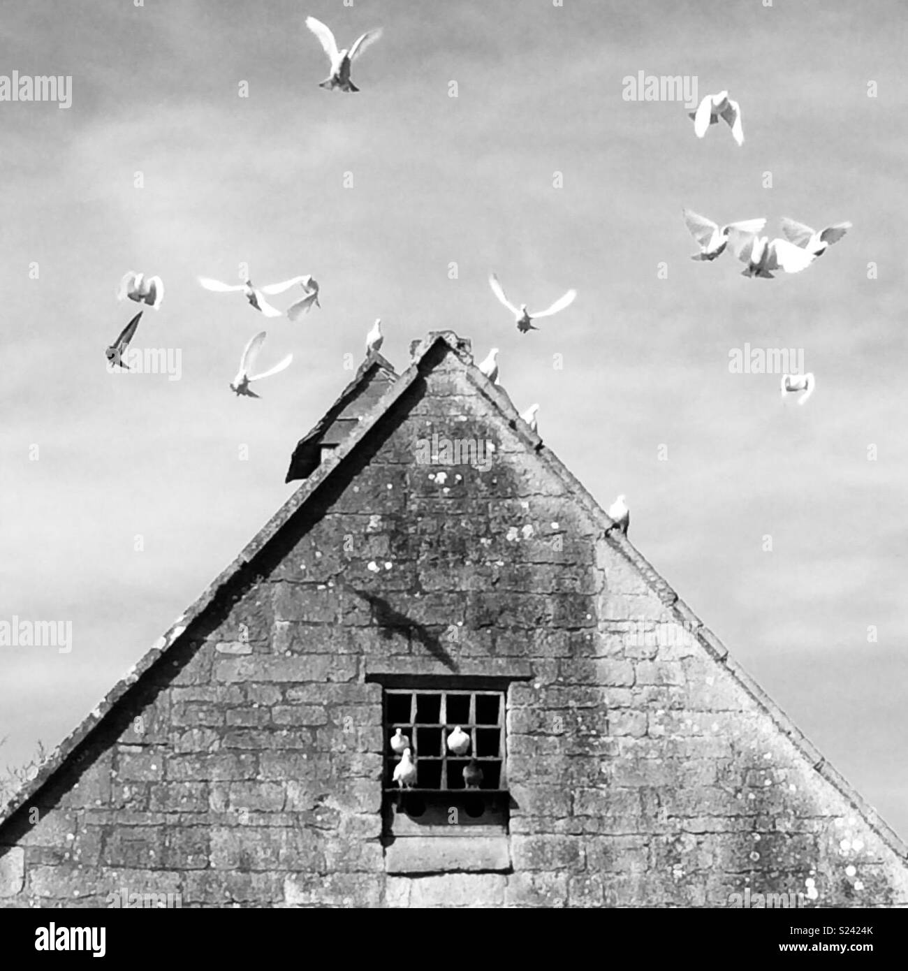 Der Taubenschlag, Snowshill Manor, Gloucestershire. Stockbild