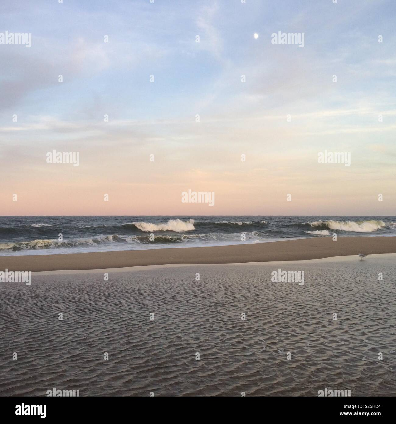 Ein Blick Auf Einen Ruhigen Strand Bei Nacht Mit Einem Rosafarbenen