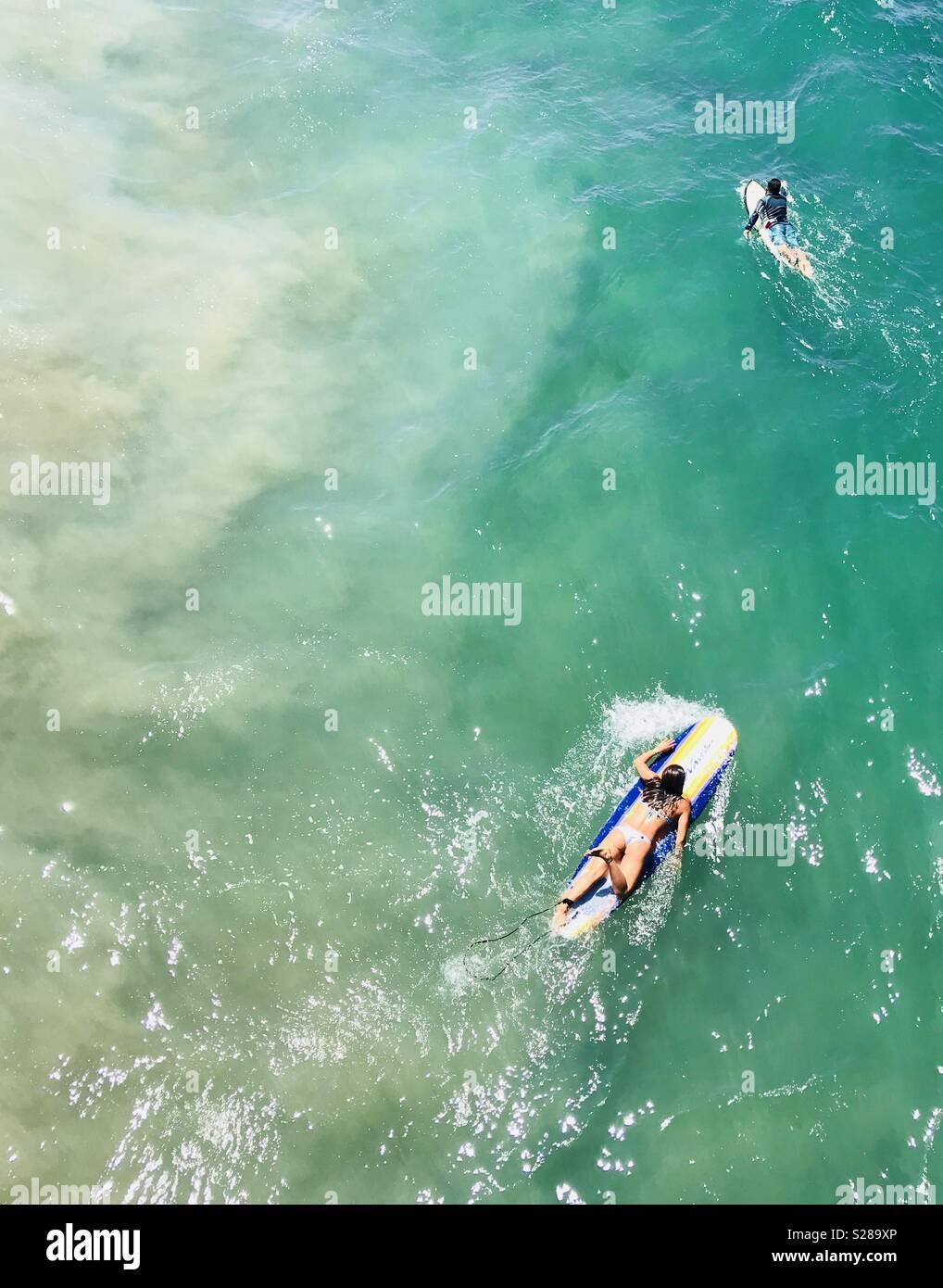 Surfer Paddeln, Surfen. Manhattan Beach, Kalifornien, USA. Stockbild