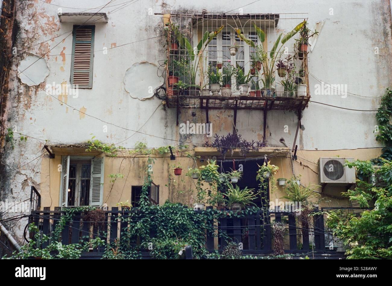 Rusty Haus mit Blumen Stockbild