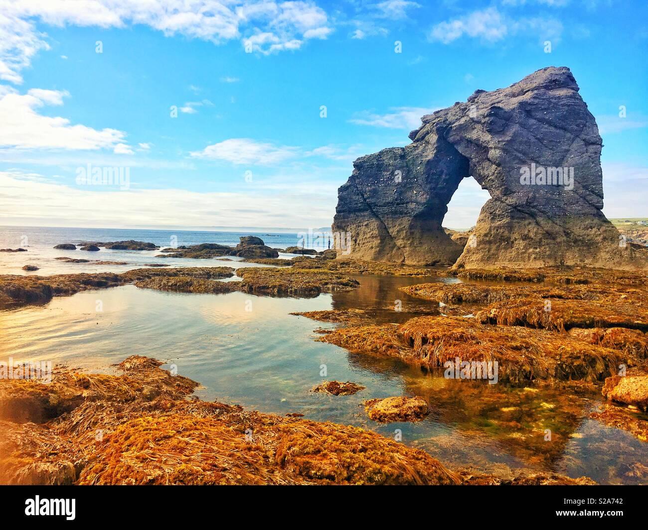 Thurlestone Rock auf der South Devon Küste in Großbritannien. Einen natürlichen Steinbogen näherte sich über Gezeiten Rock Pools. Stockfoto