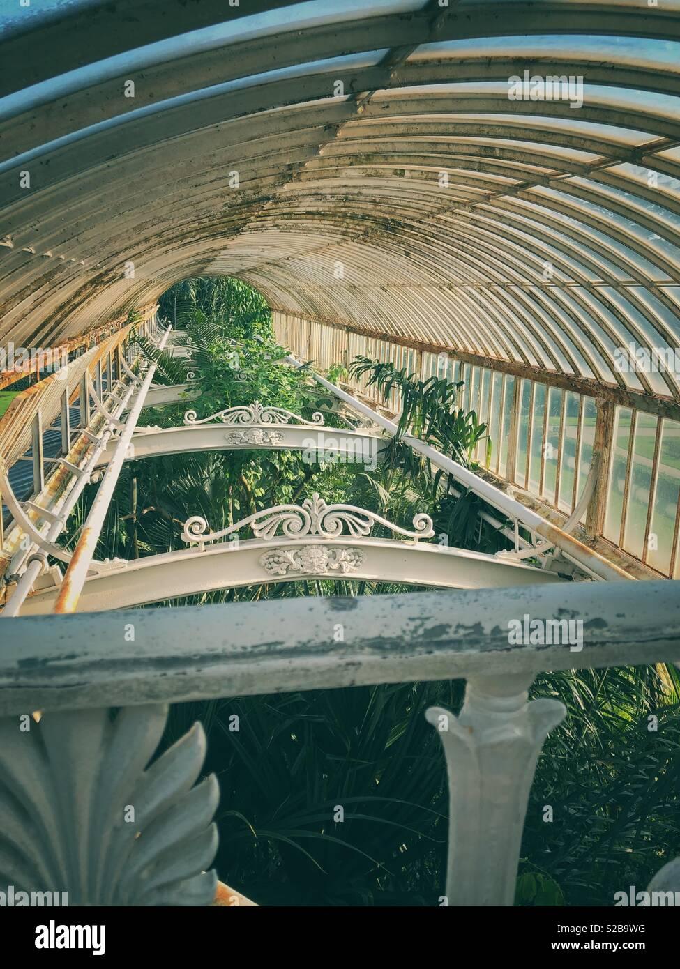 Gewächshaus Wintergarten Stockbild