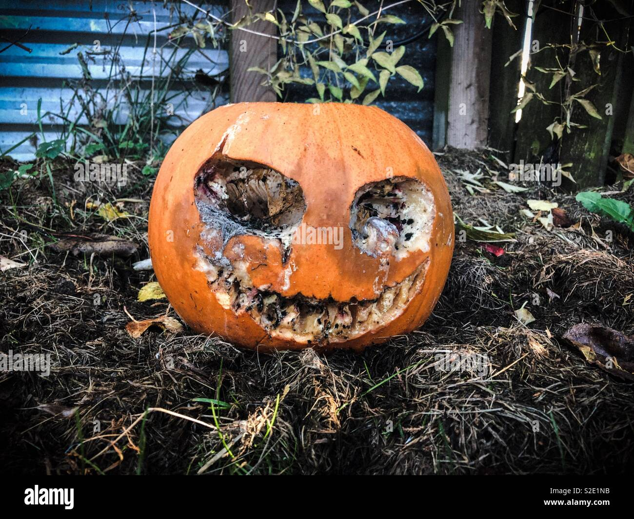 Post Halloween Stockbild