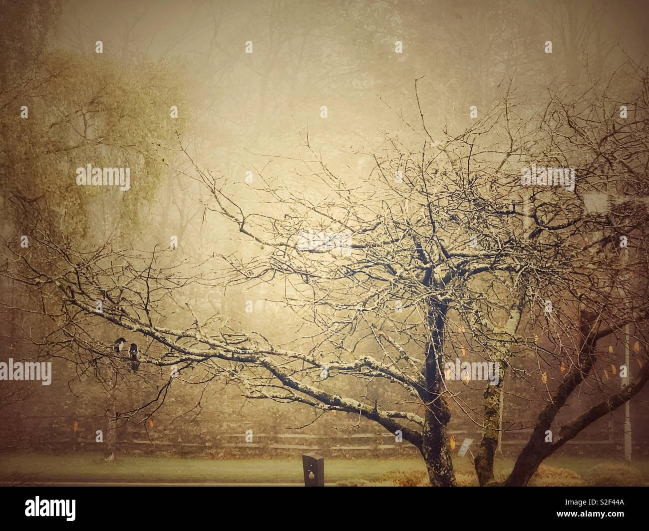 Nostalgische winter Stockbild