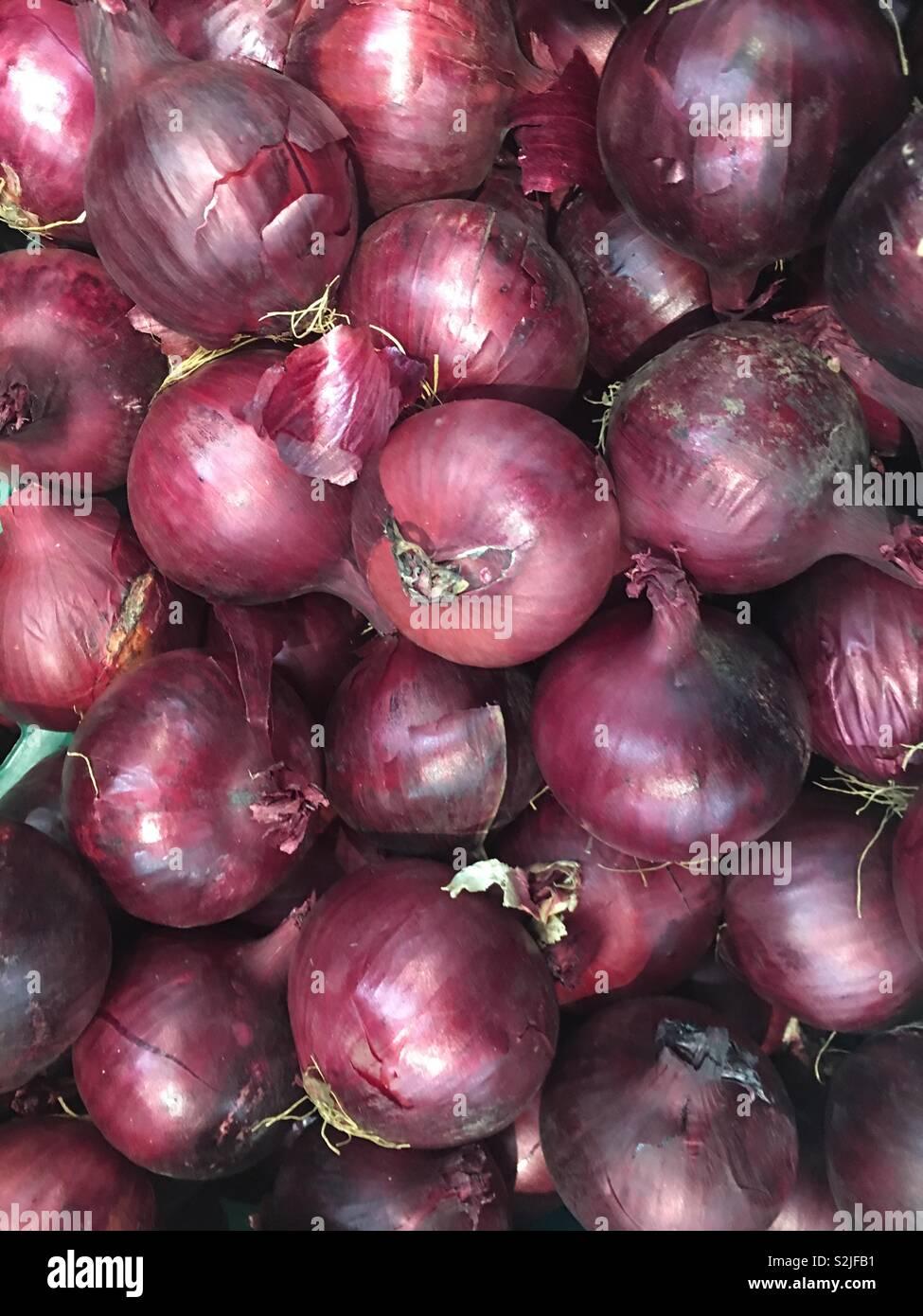 Rote Zwiebeln Allium cepa) zum Verkauf in grün Lebensmittelhändler Stockbild