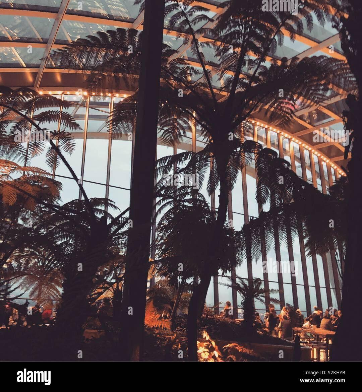 Himmel-Garten Stockfoto