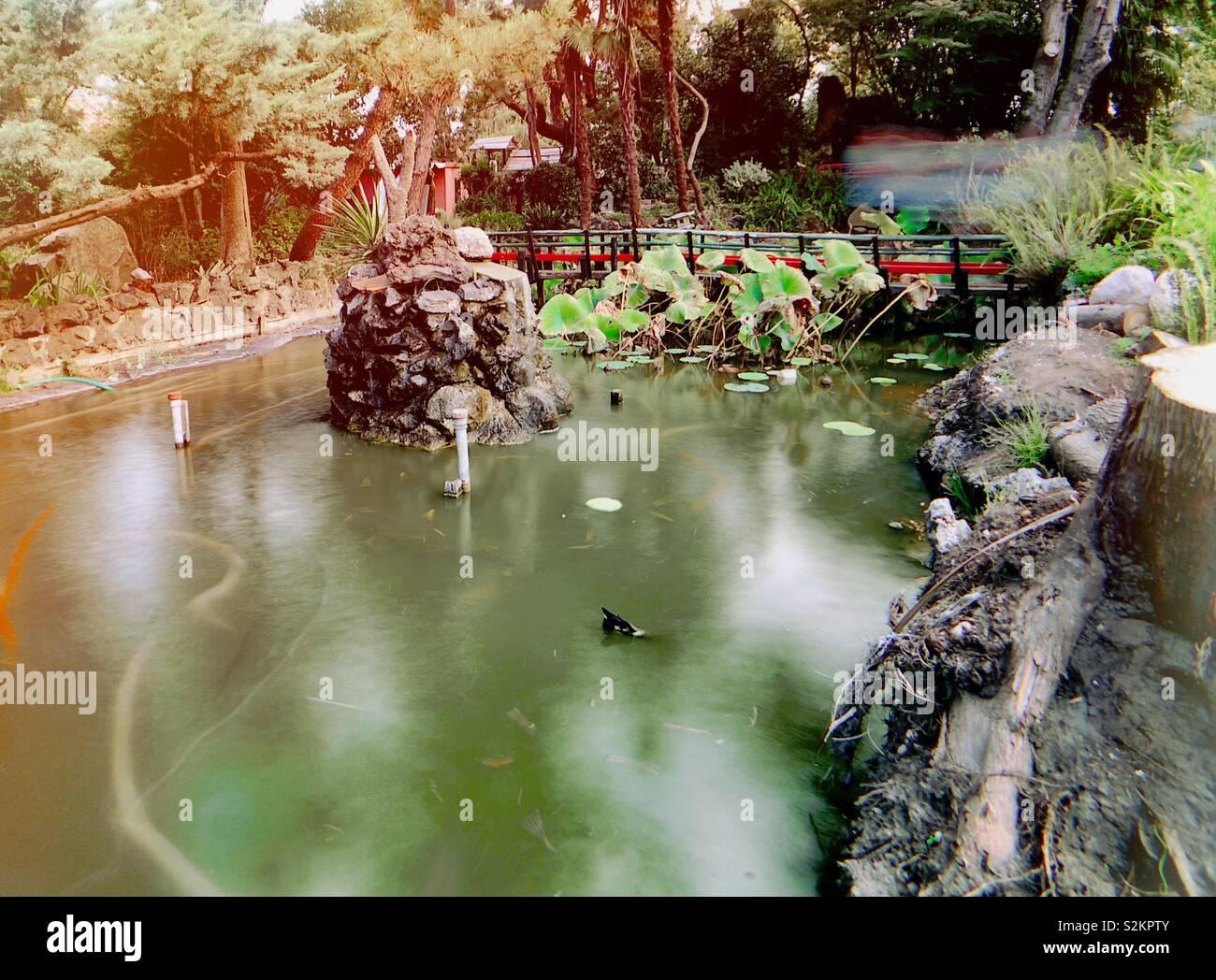 Sonntag im Park Mizujo Stockfoto