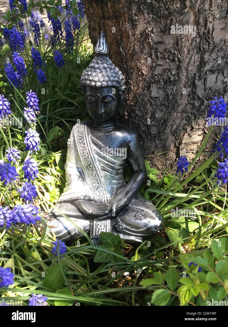 Meditation Buddha Statue Im Garten Stockfoto Bild 311456475 Alamy