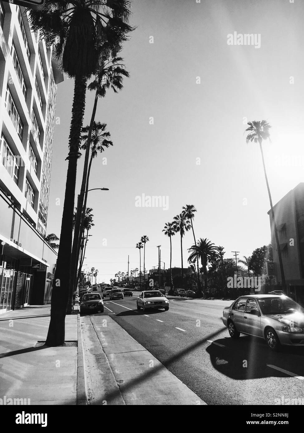 Schwarz & Weiß Blick auf die Straße. LA. Stockfoto