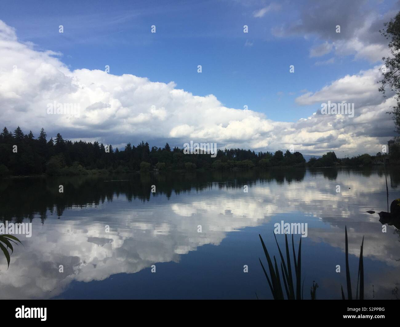 Verloren largoon im Stanley Park, Vancouver, Kanada Stockbild